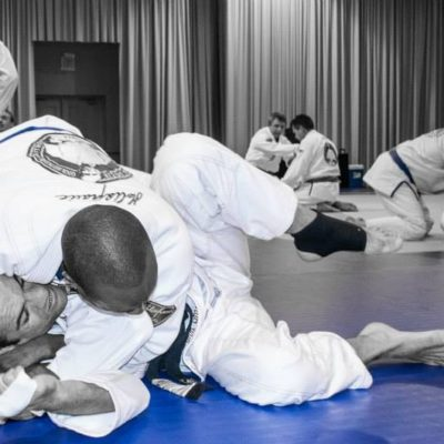 Gracie Combatives®